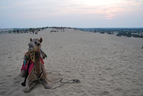 Turisti sulla duna