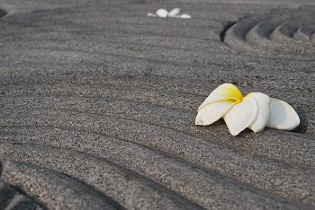 Pace al memoriale di Gandhi