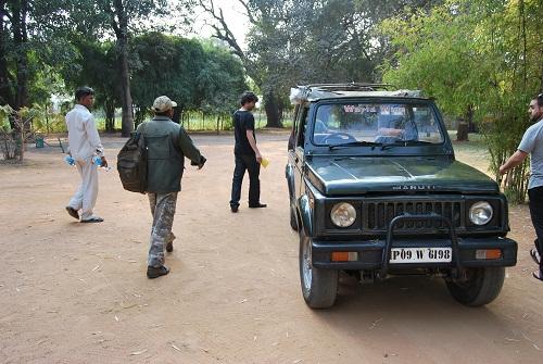 Jeep safari Panna National Park Khajuraho