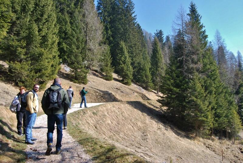 Foresta dei Draghi - Trentino