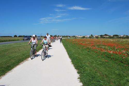 Ile de Ré in bici