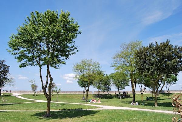 Saint Martin de Rè - Parc de la Barbette