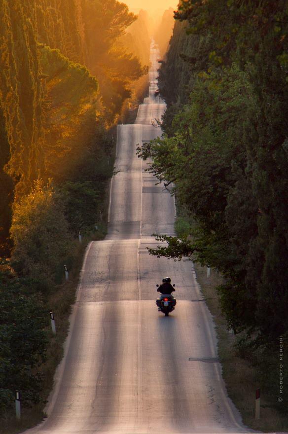 Bolgheri Photo © Roberto Nencini