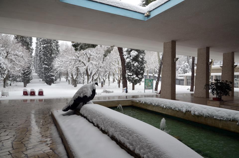 Terme Chianciano Neve Toscana