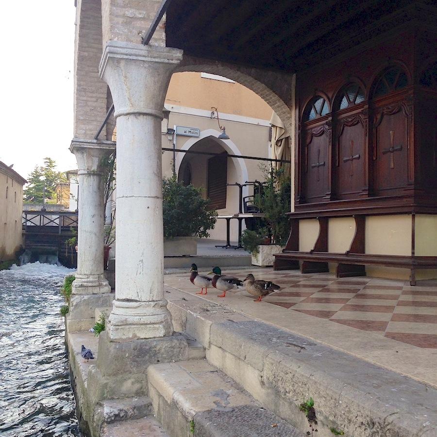 Antica Pescheria di Portogruaro