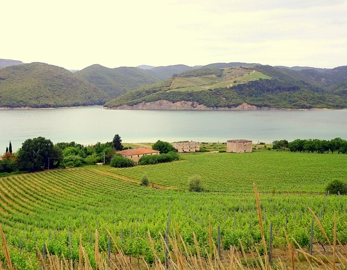 lago corbara